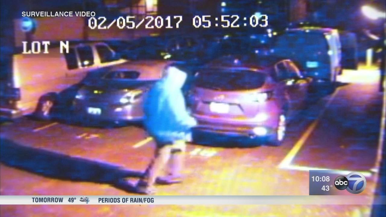 Thief caught on camera stealing from Skokie van