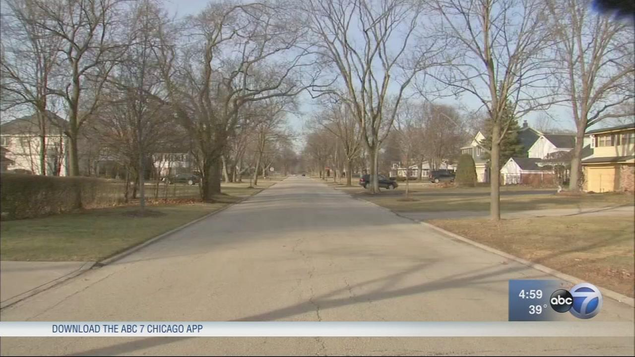 Girl, 17, carjacked in her driveway in Western Springs
