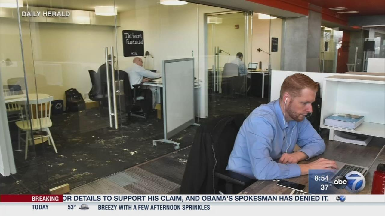 Daily Herald: Shared office spaces