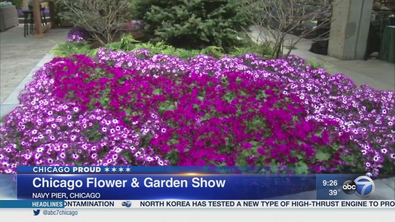 Spring comes early at the Chicago Flower Garden Show
