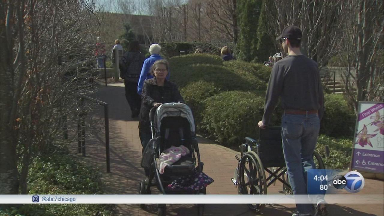Record temps have Chicagoans enjoying outdoors