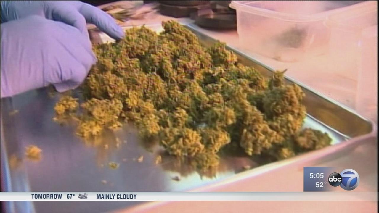 Illinois lawmakers hear testimony from Colorado about legal marijuana
