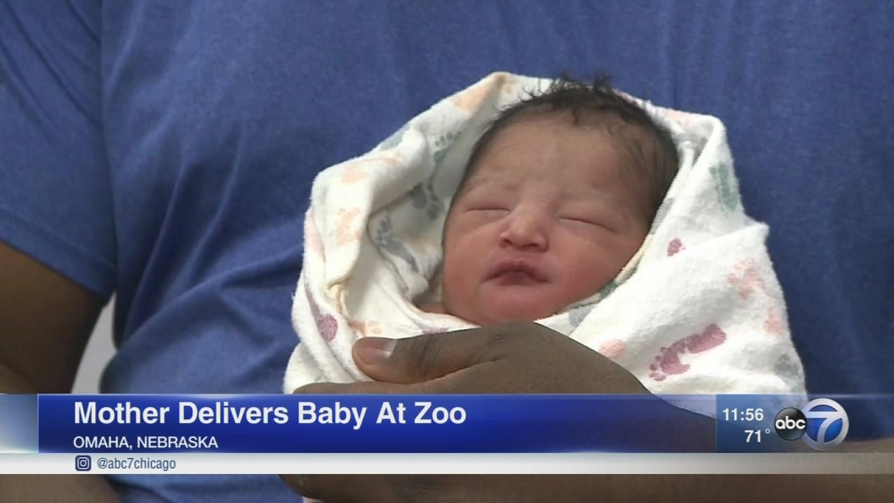 Woman gives birth to baby at Nebraska zoo