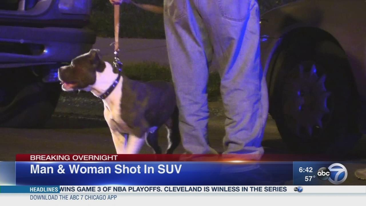 2 shot while driving with dog in Chicago Lawn