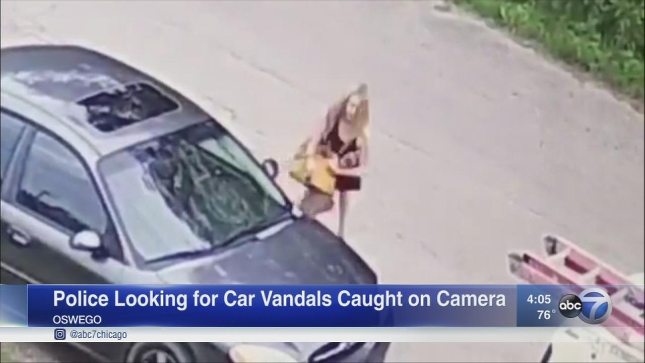 Oswego vehicle vandalism caught on tape