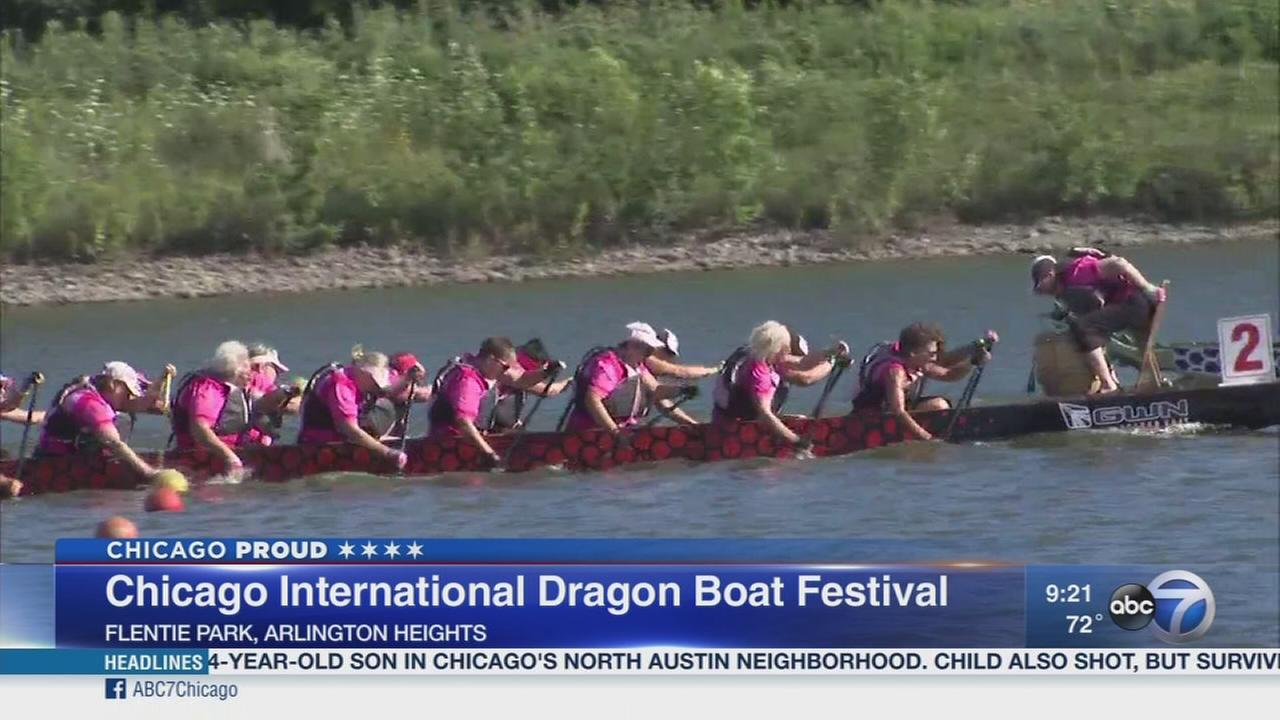 The race is on at the Dragon Boat Festival in Arlington Heights