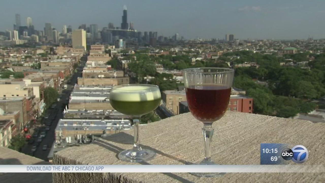 Hungry Hound: Chicago hotel rooftops
