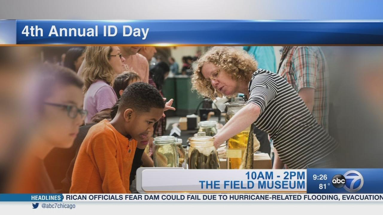 Field Museum ID Day