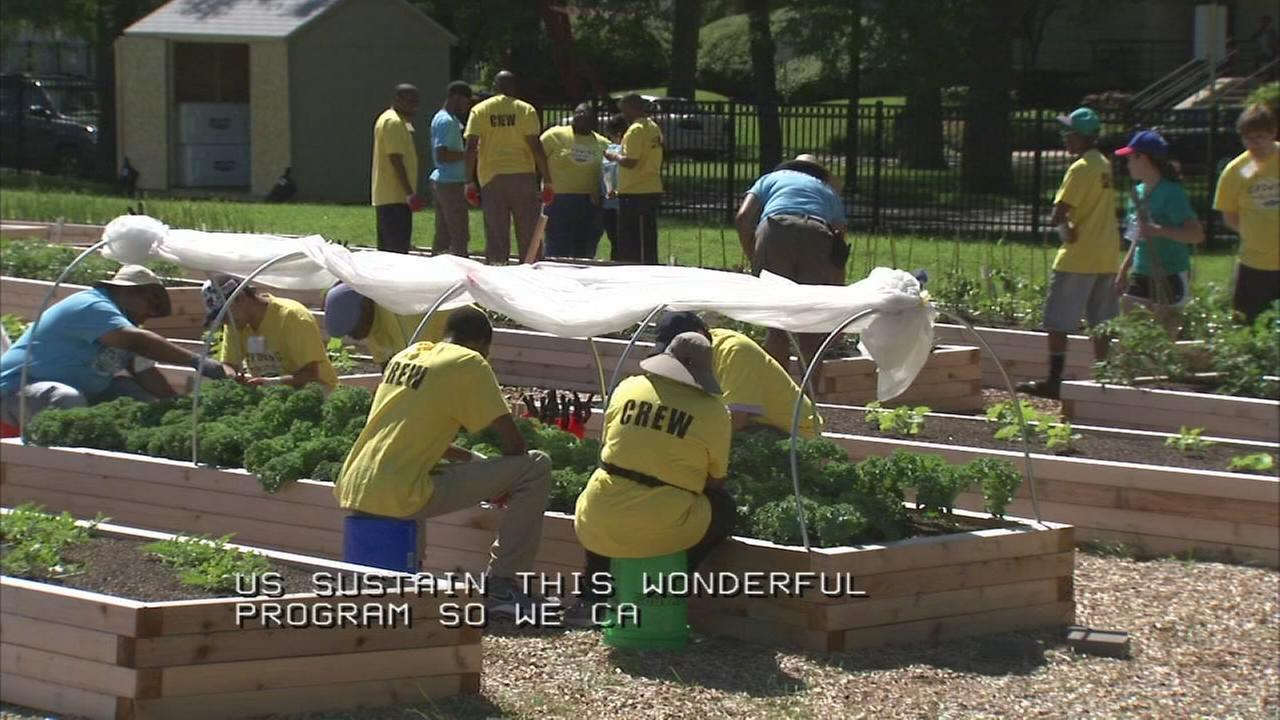 Growing Solutions Farm provides autism support
