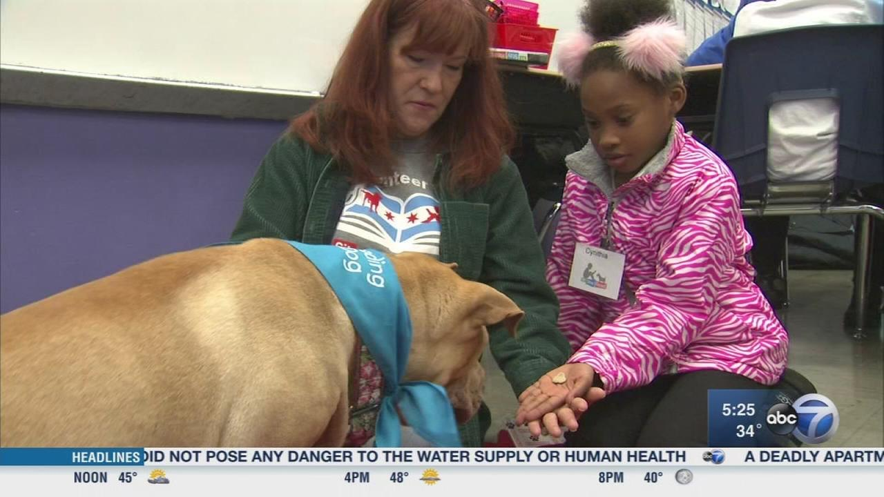 Program uses dogs to help kids learn to read