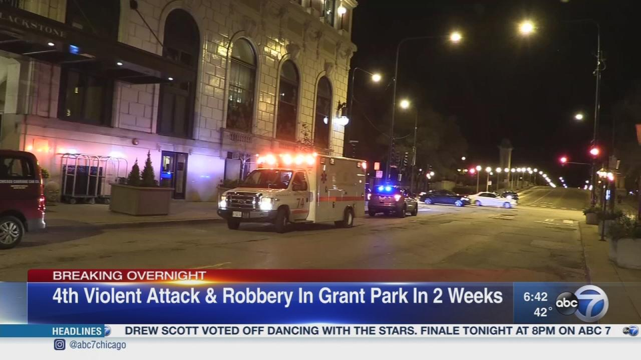 Man beaten, robbed by 4 males near Grant Park