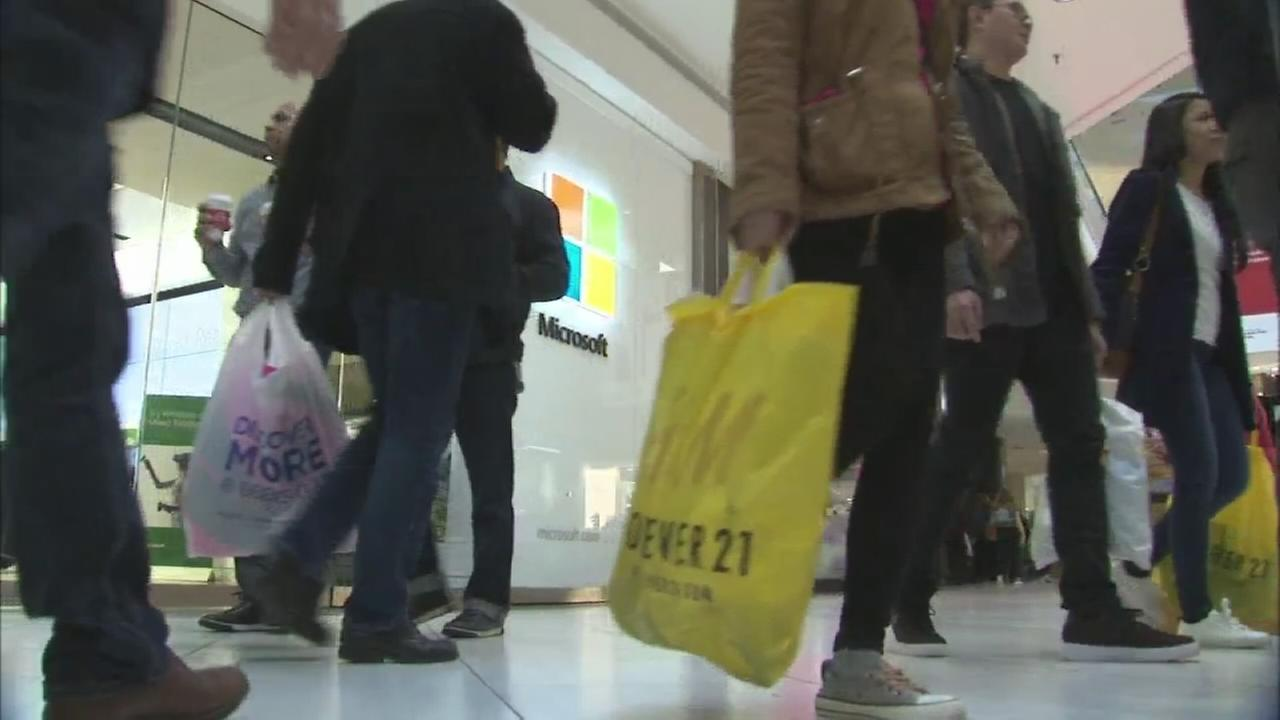 Shoppers hit the mall on Black Friday