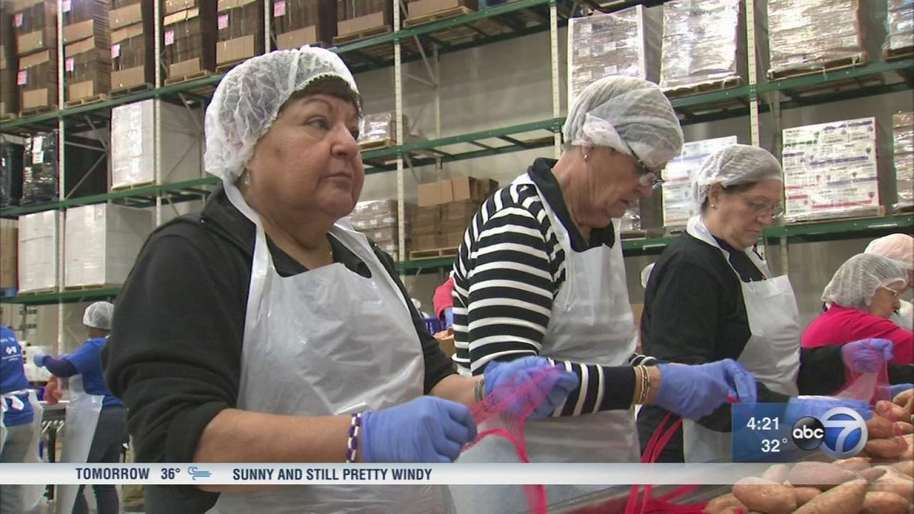 Greater Chicago Food Depository volunteers key to fight against hunger