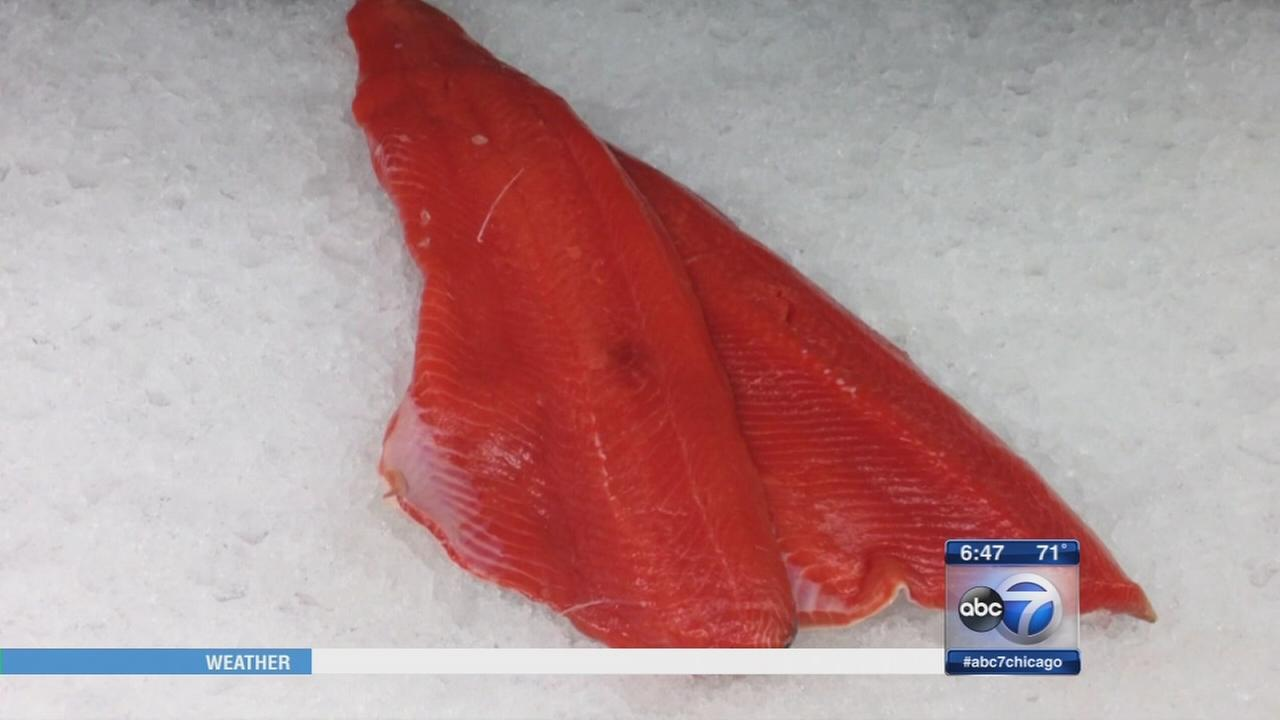Consumer Reports Mercury in Fish