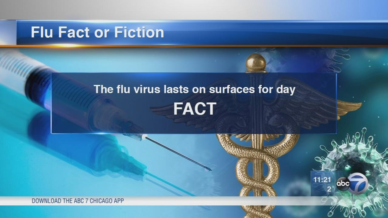 Facts about getting the flu