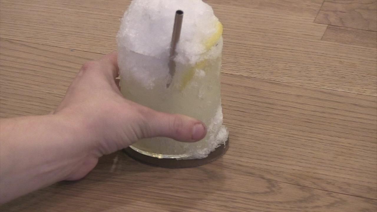 Extra Course: Lemon Ice