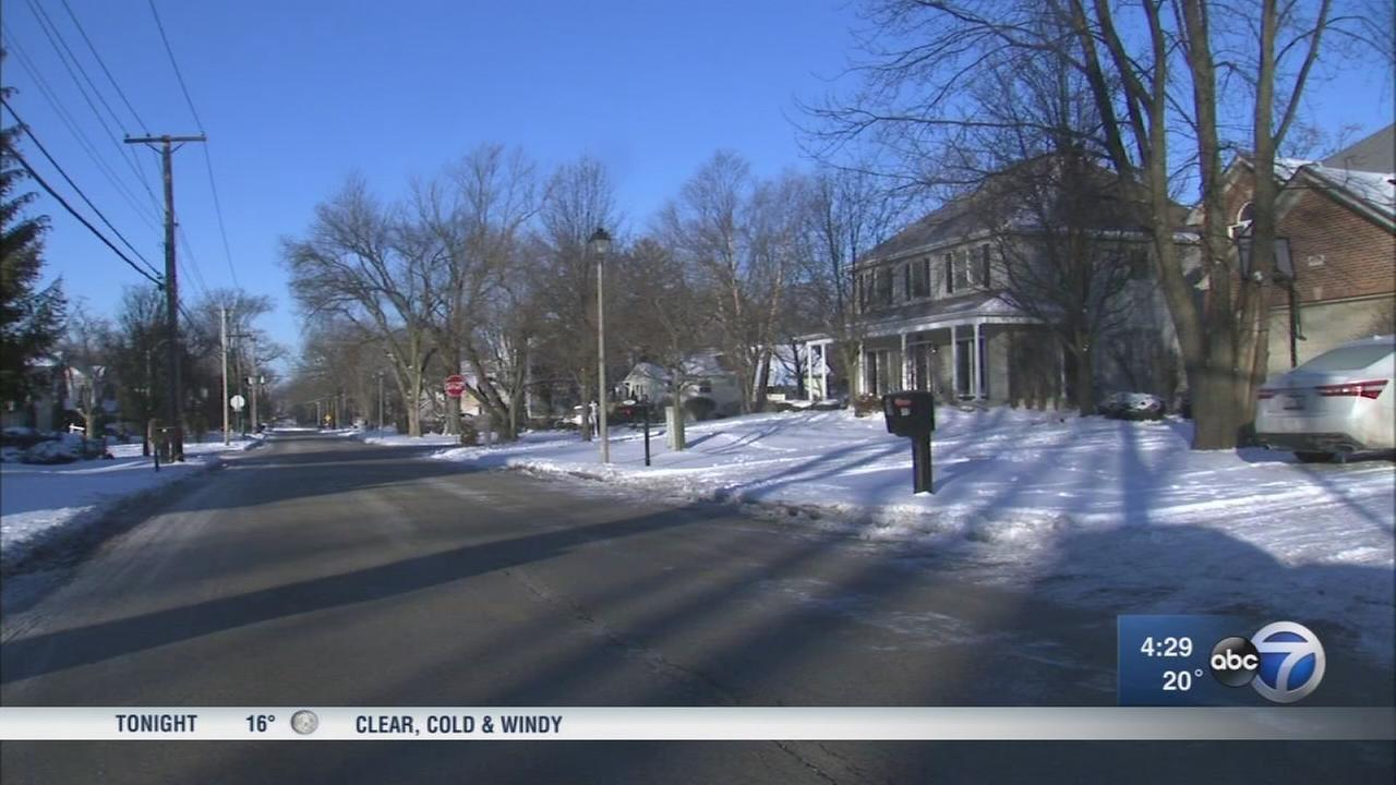 2 Elmhurst homes targeted by would-be burglar