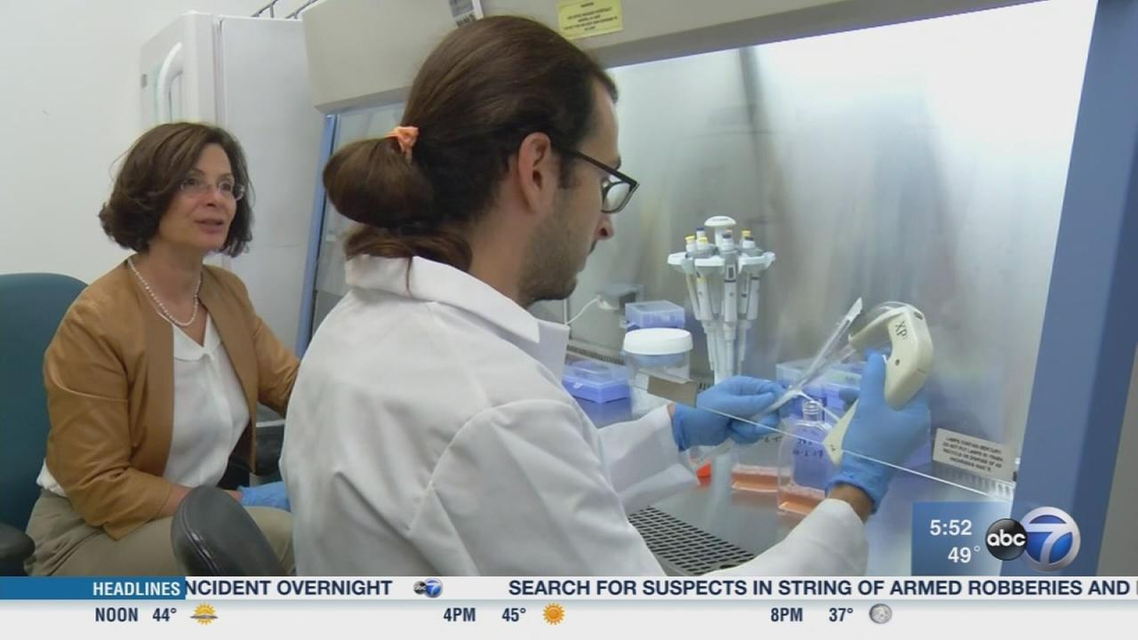 Researchers working to find cause of celiac disease