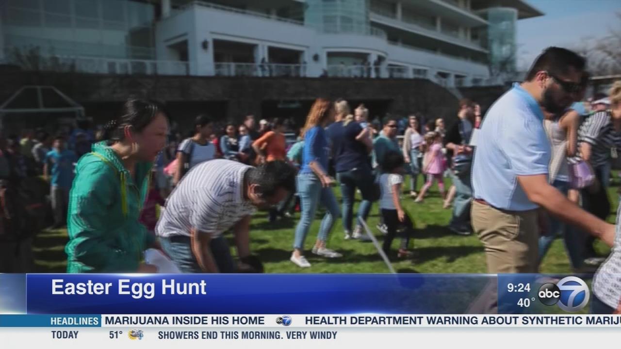 Arlington Park Easter egg hunt