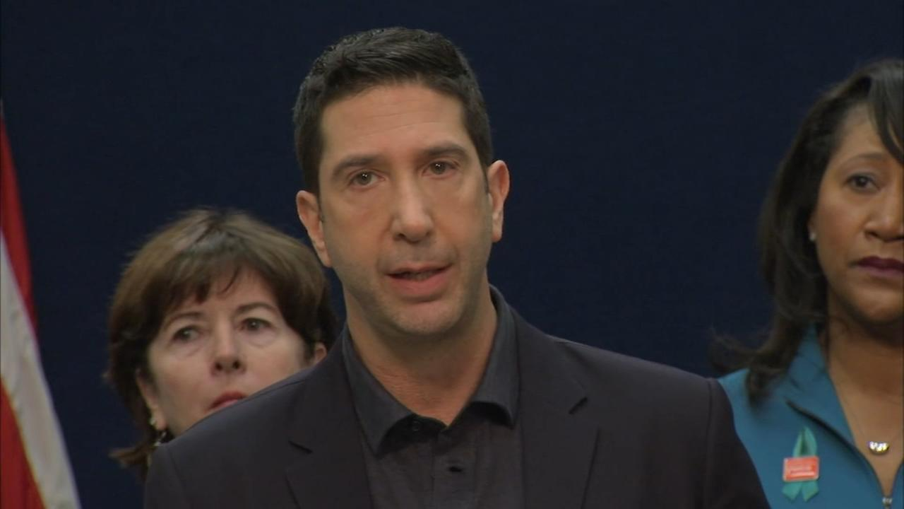 David Schwimmer to bring anti-sexual harassment PSAs to Chicago