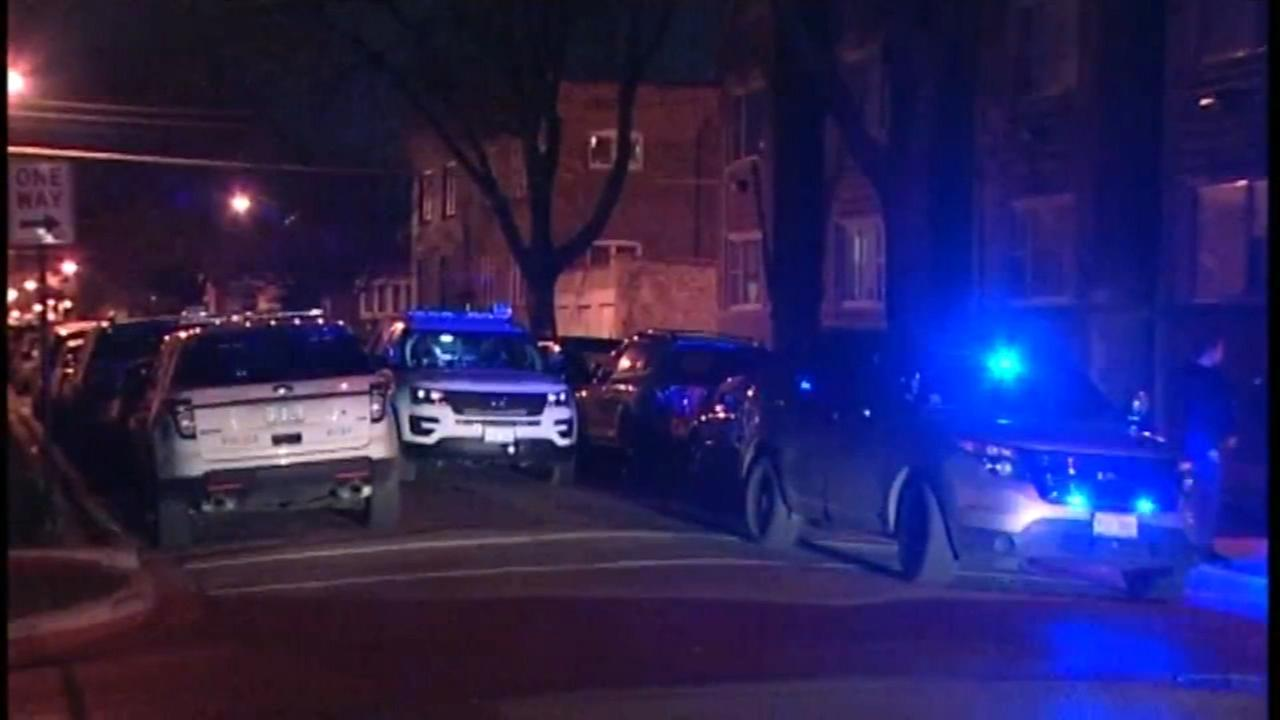 Woman fatally stabbed, pushed out of car in Chicago Lawn