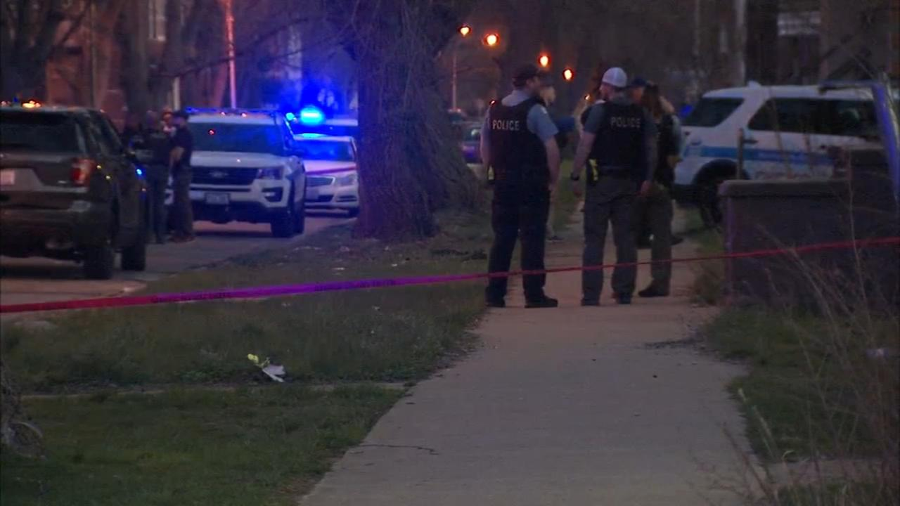 Woman, 68, seriously injured in West Woodlawn dog attack