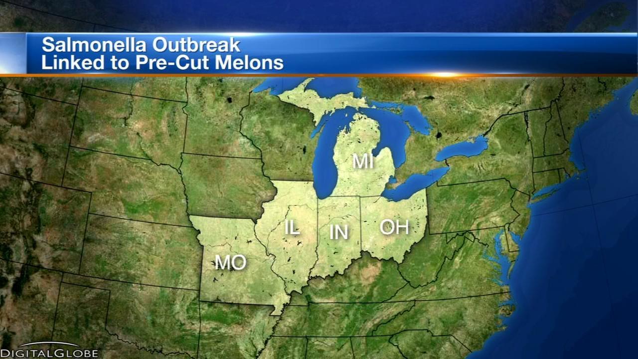 Salmonella outbreak linked to pre-cut melon