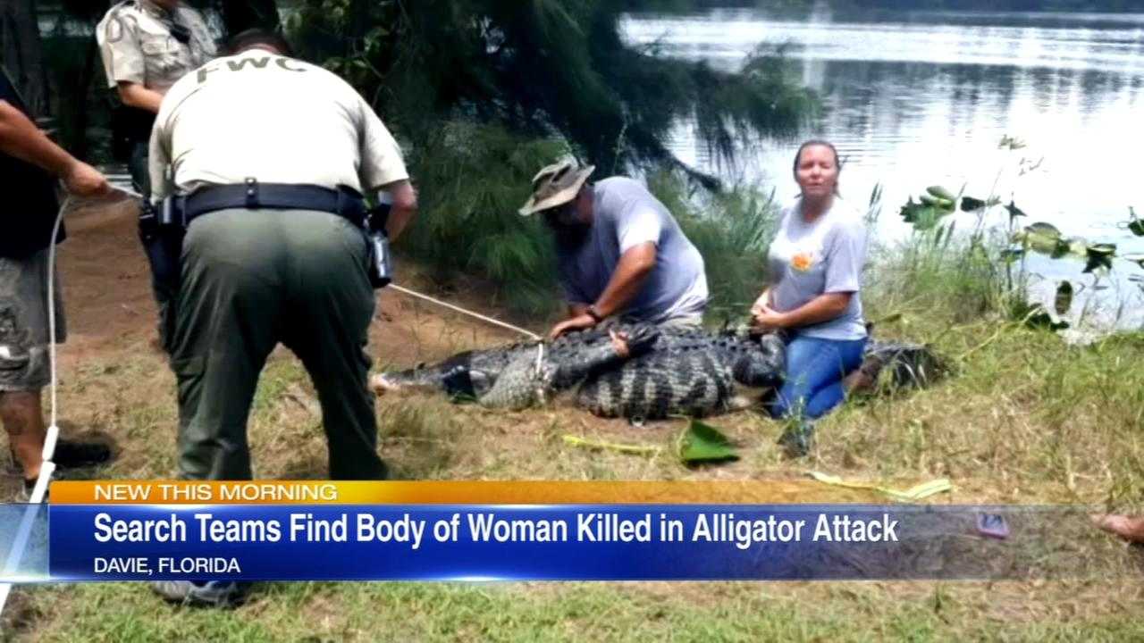 Body of woman killed by alligator in Florida found