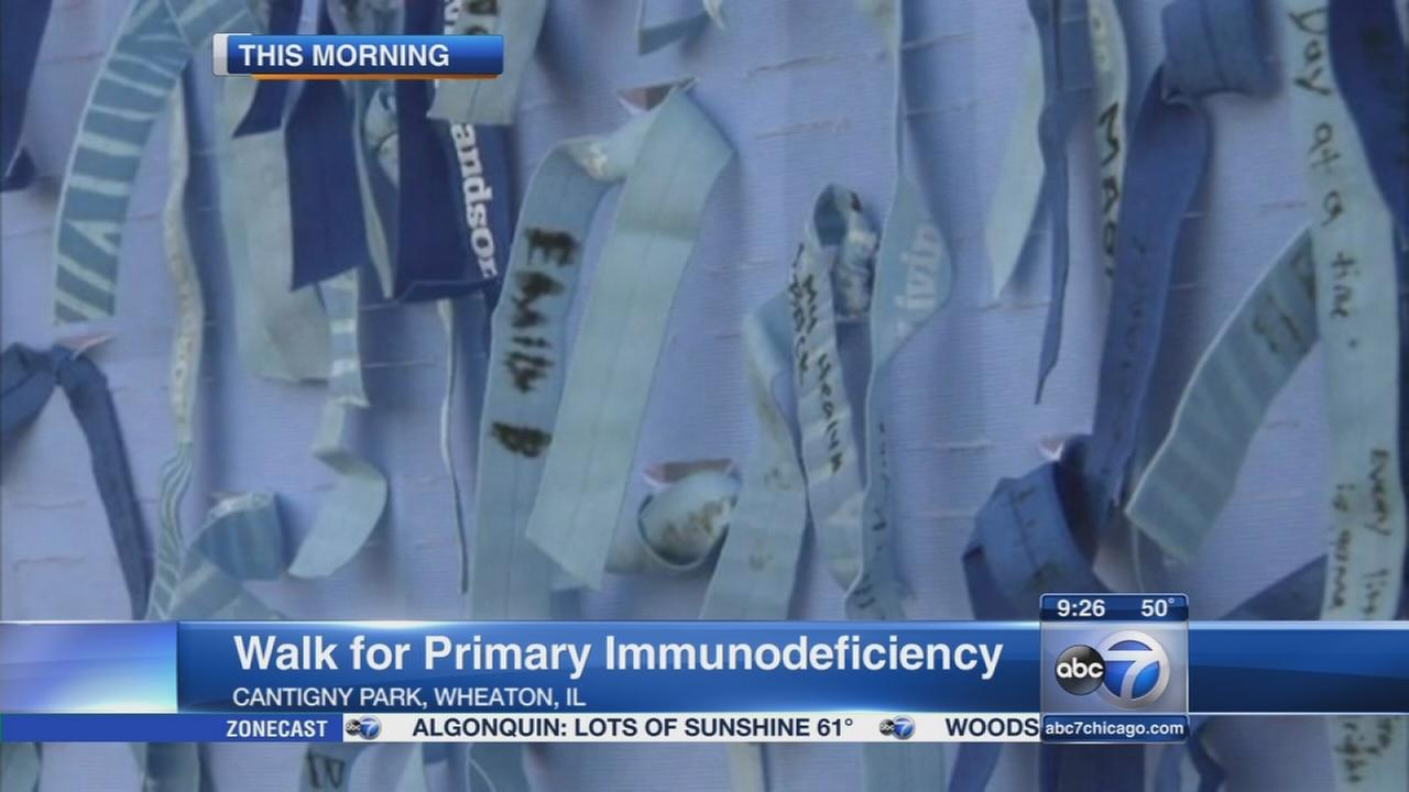 Wheaton hosts Walk for Primary Immunodeficiency