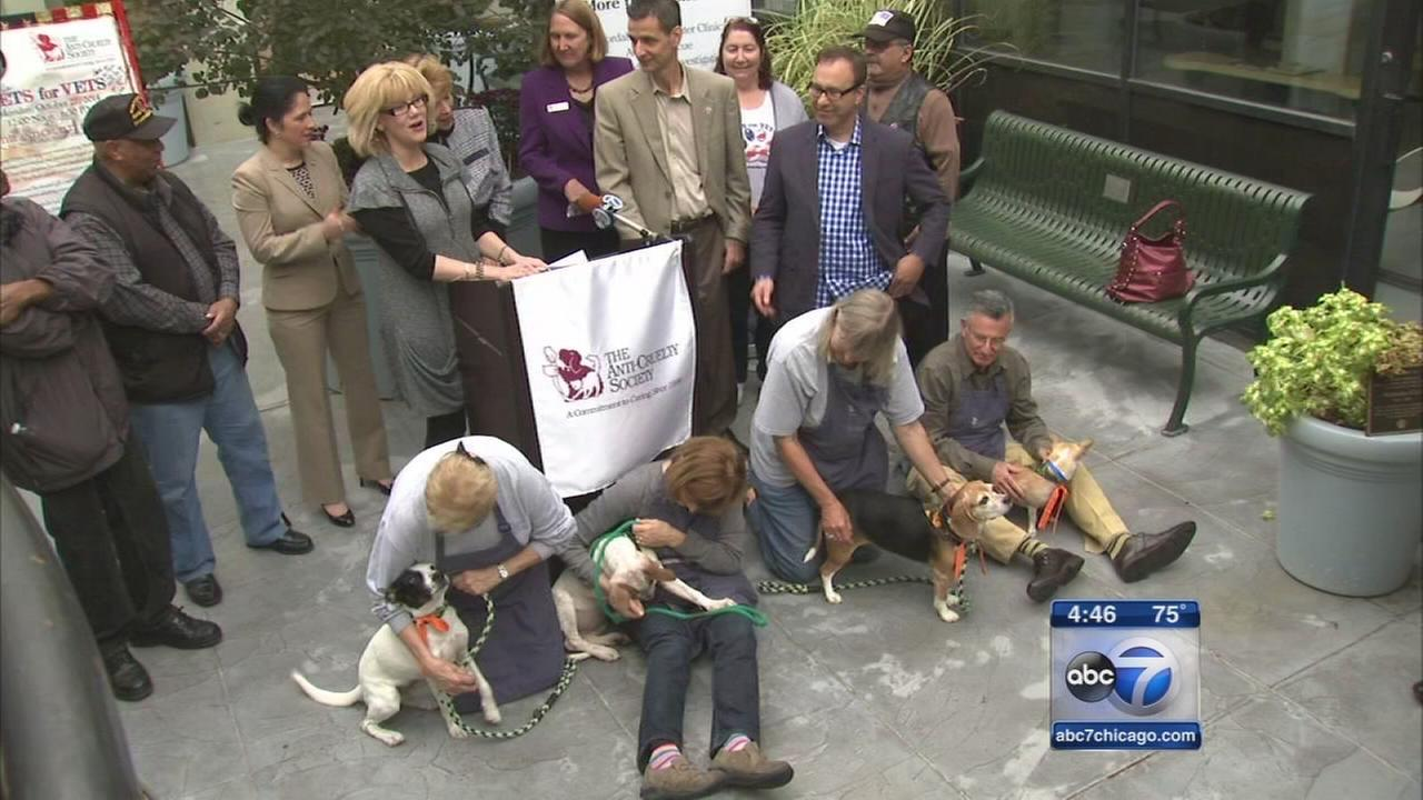 Veterans connect with Anti-Cruelty Society pets