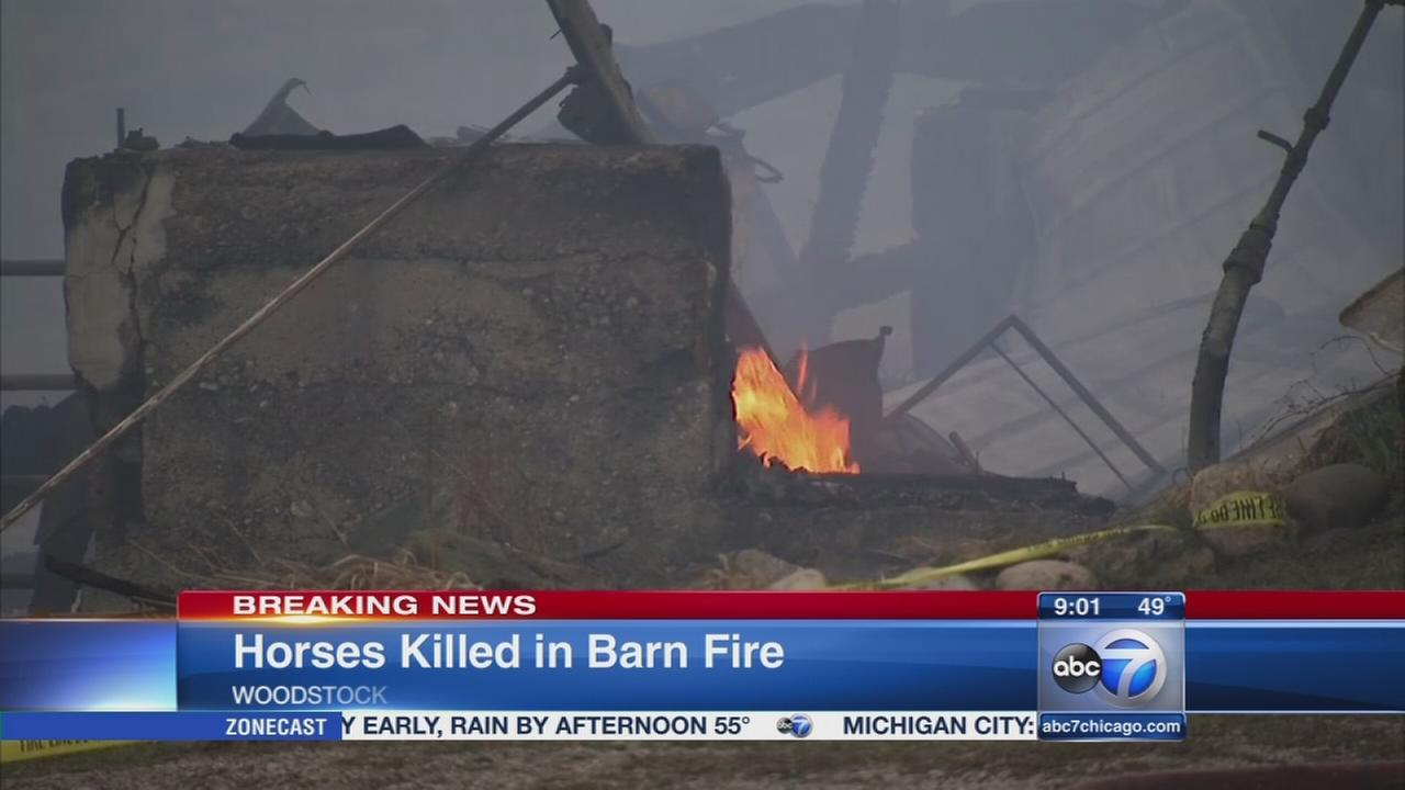 Woodstock barn fire kills 32 horses, police say