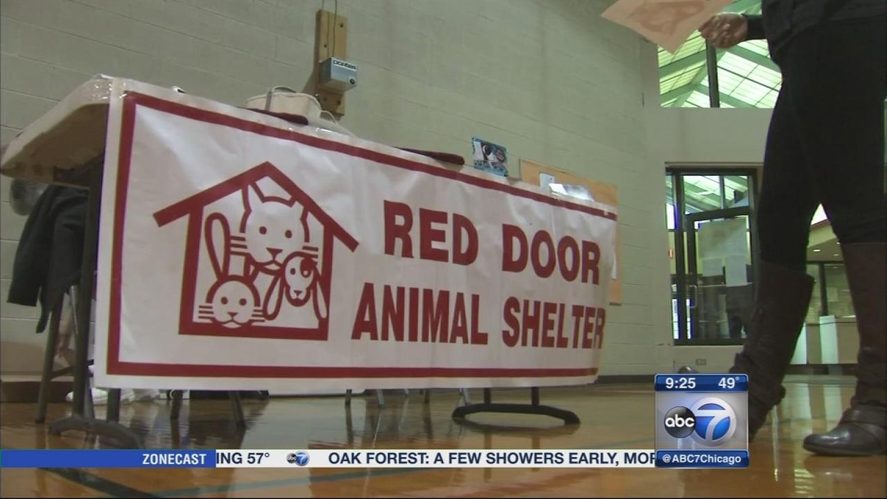 Red Door Animal Shelter hosts Winter Bazaar fundraiser