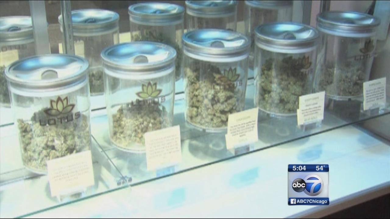medical marijuana availability When fully implemented, the medical marijuana program will provide access to  medical marijuana for patients  medical marijuana availability in pennsylvania.