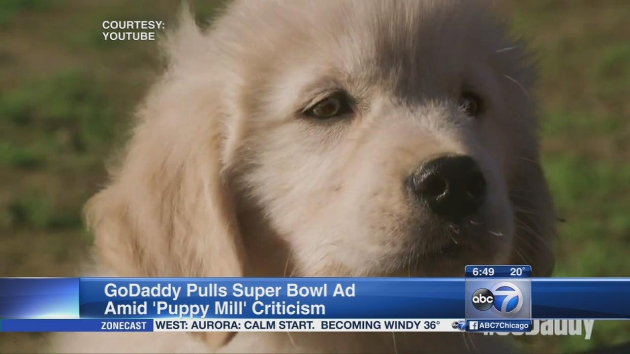 GoDaddy pulls Super Bowl ad