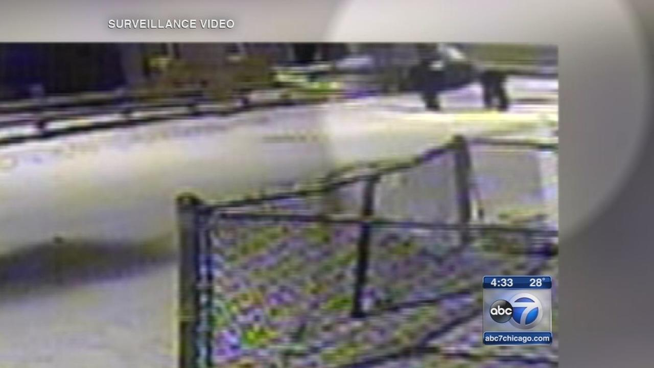 Video released in fatal Riverdale shooting