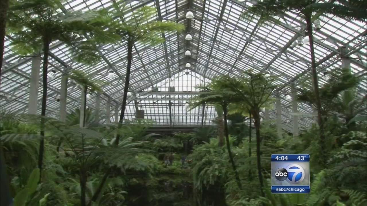 Garfield Park Conservatory reopens after damaged by hail