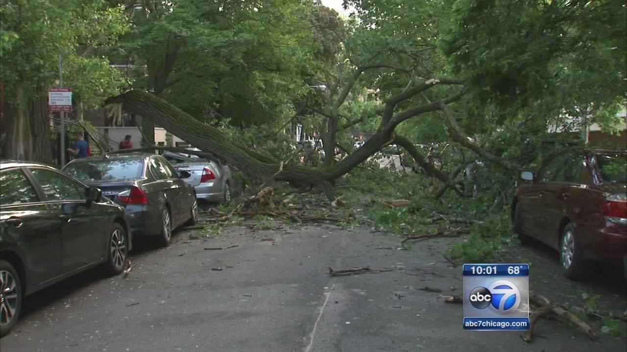Strong storms down trees, power poles in Summit