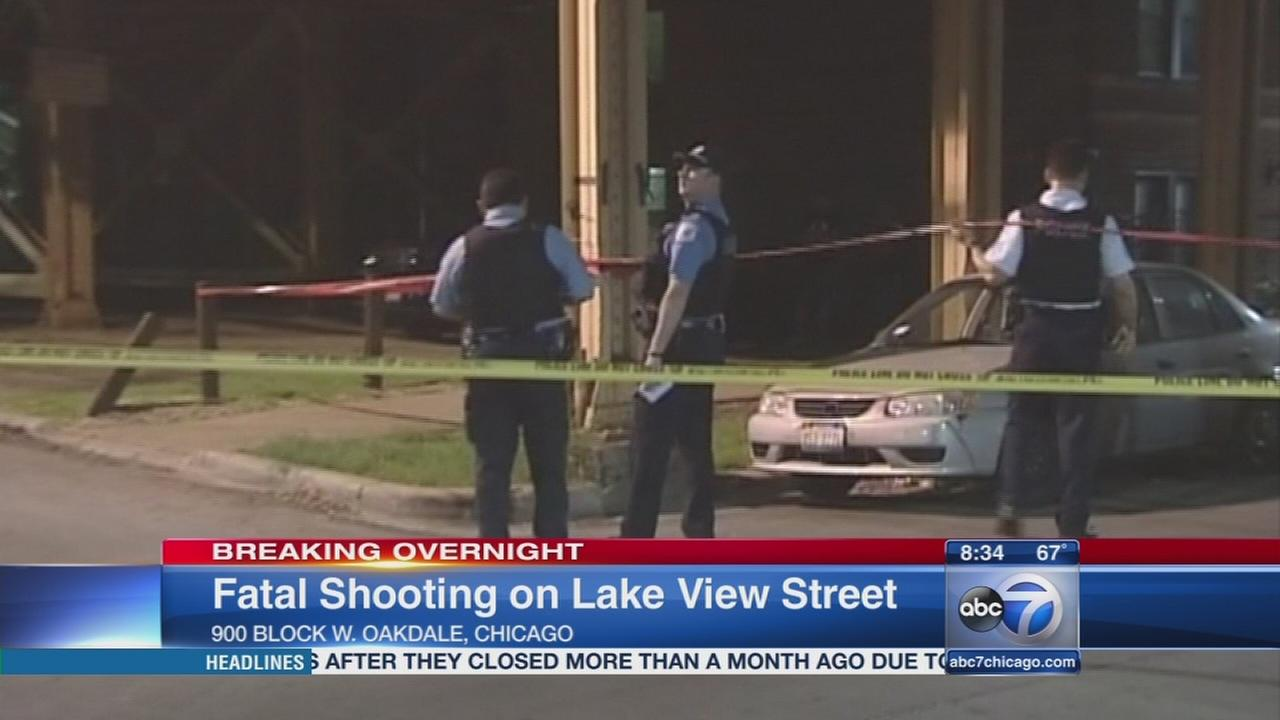 Man shot to death in Lakeview alley