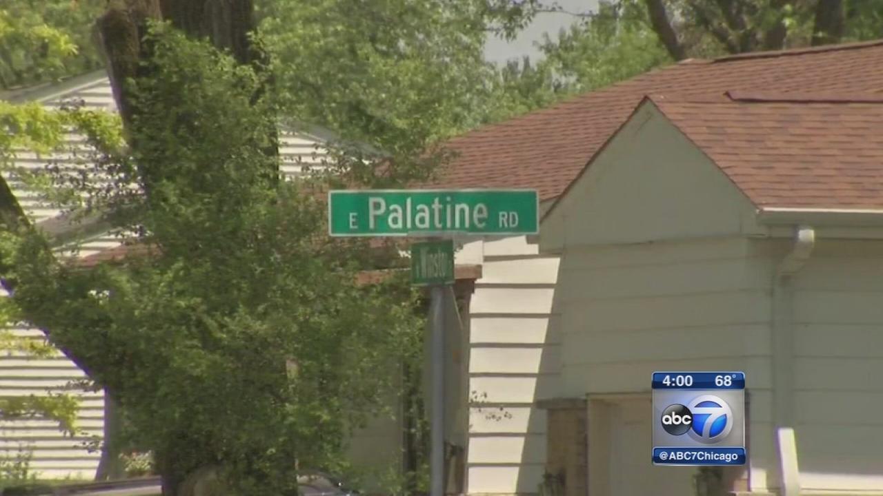 Palatine boy, 5, struck, killed by car
