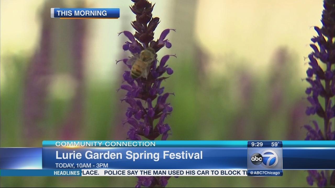 Chicagos Lurie Garden Hosts Spring Festival