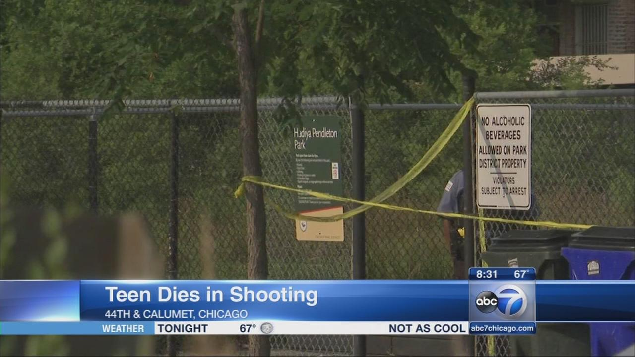 Teen killed near Hadiya Pendleton Park