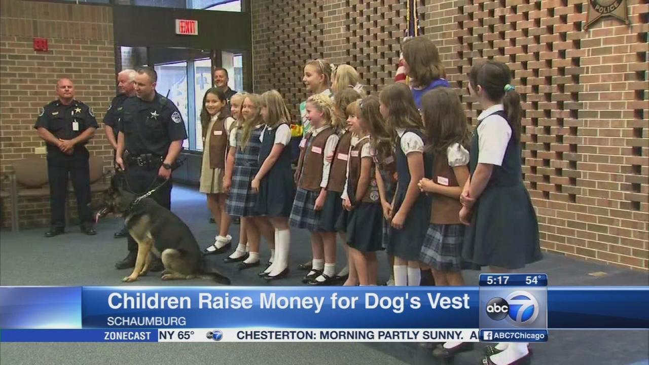 Schaumburg police dog gets new vest from kids