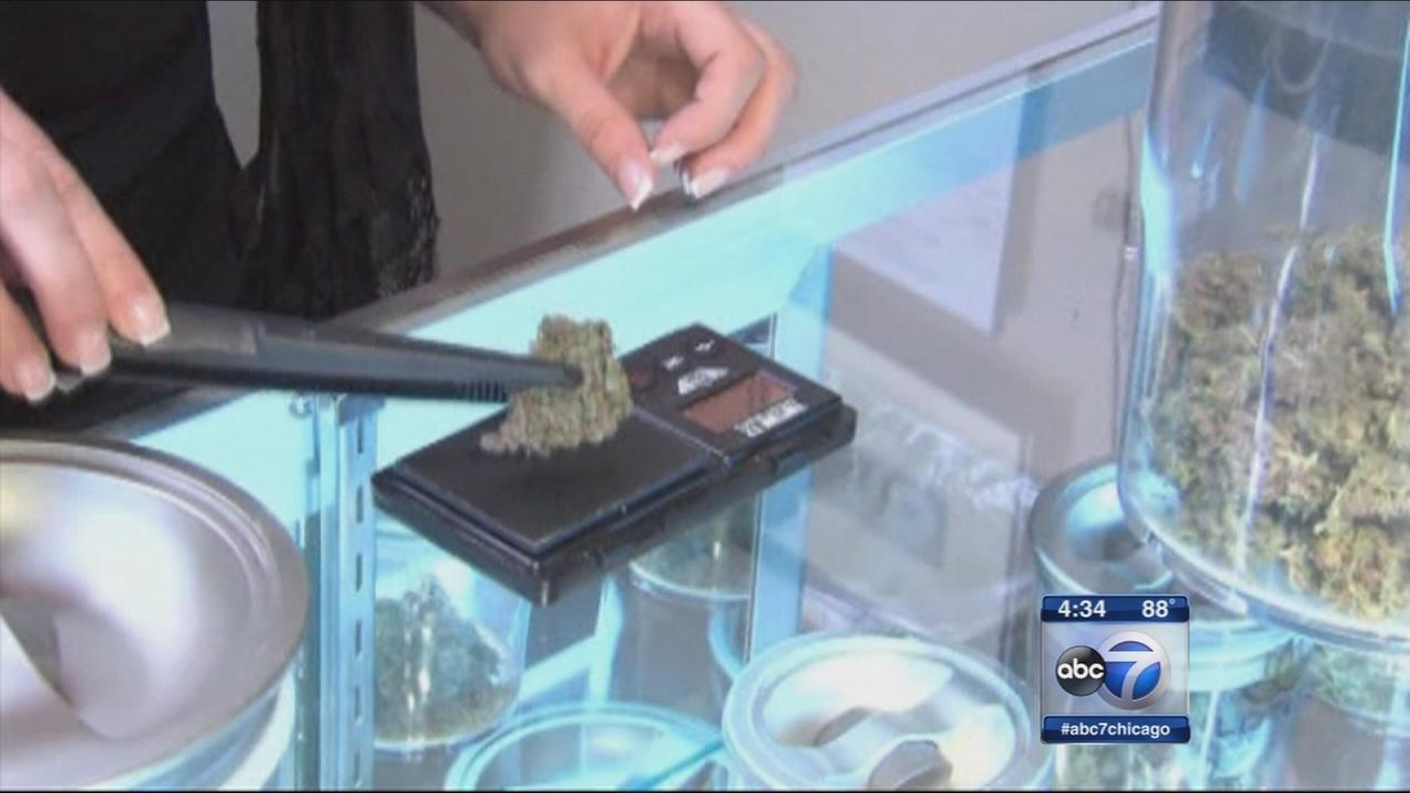 Medical marijuana growing in IL