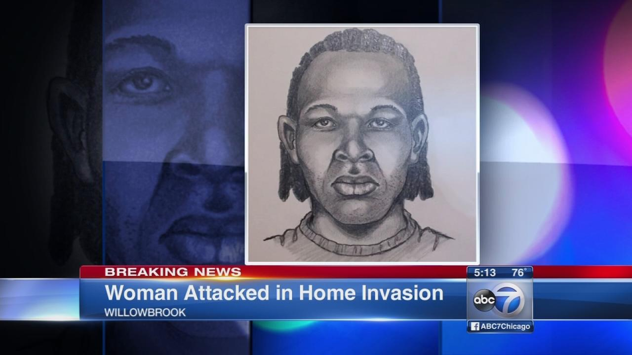 Willowbrook attack suspect sketch, details released