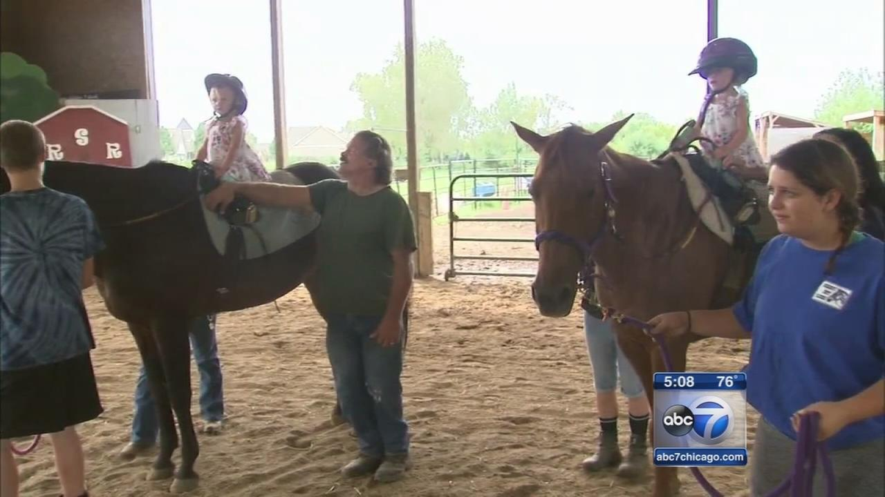 Horse therapy non-profit