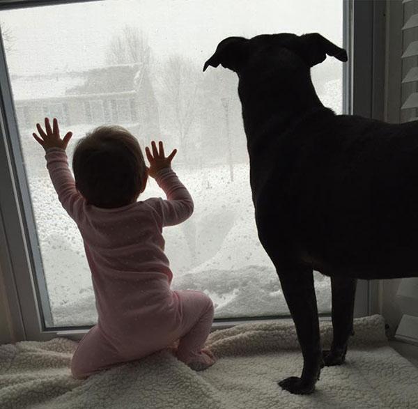 "<div class=""meta image-caption""><div class=""origin-logo origin-image none""><span>none</span></div><span class=""caption-text"">Emma and Raven the dog enjoy the snow view.  (Action News Viewer )</span></div>"