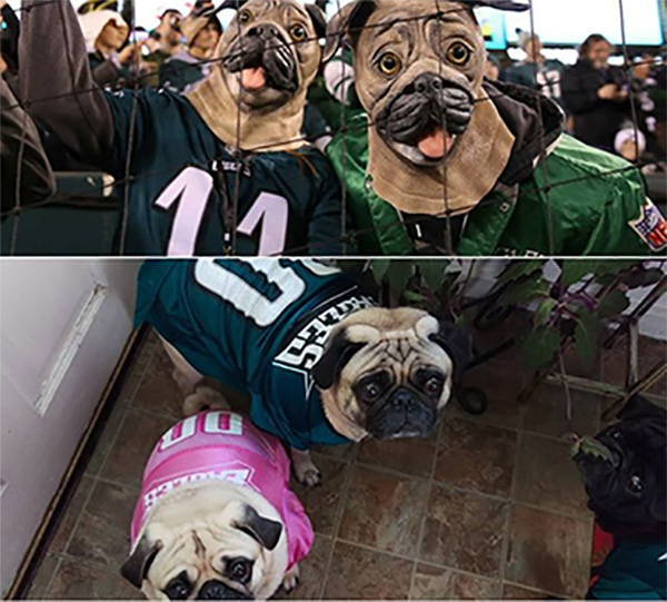 "<div class=""meta image-caption""><div class=""origin-logo origin-image wpvi""><span>WPVI</span></div><span class=""caption-text"">""We don't know those two Eagles fans, but we love them."" - From pugskie on Instagram.</span></div>"