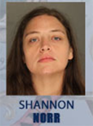 "<div class=""meta image-caption""><div class=""origin-logo origin-image none""><span>none</span></div><span class=""caption-text"">Shannon Marie Norr, 34, of Erie St., Franklin</span></div>"
