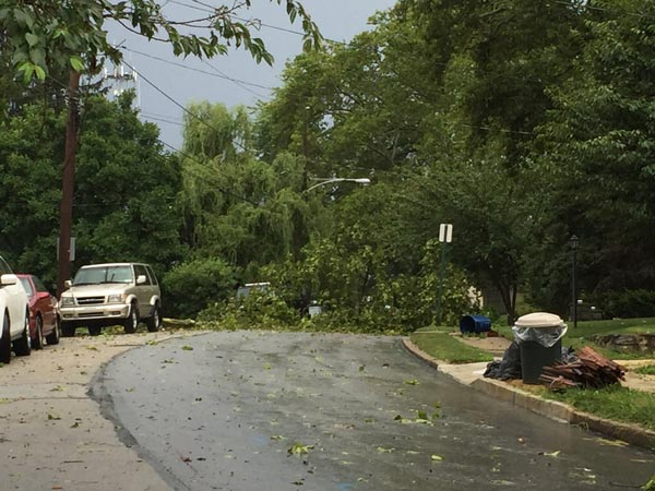 <div class='meta'><div class='origin-logo' data-origin='WPVI'></div><span class='caption-text' data-credit=''>A downed tree in Havertown, Delaware County.</span></div>