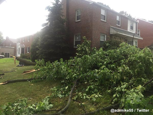 <div class='meta'><div class='origin-logo' data-origin='WPVI'></div><span class='caption-text' data-credit=''>Action News viewer Adrian Hickman‏ sent in this photo of downed trees in Havertown, Pa.</span></div>